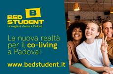Banner BedStudent